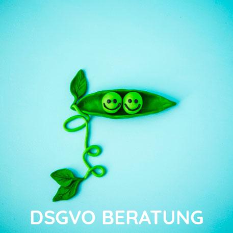 PelikanPublishing_DSGVO Beratung